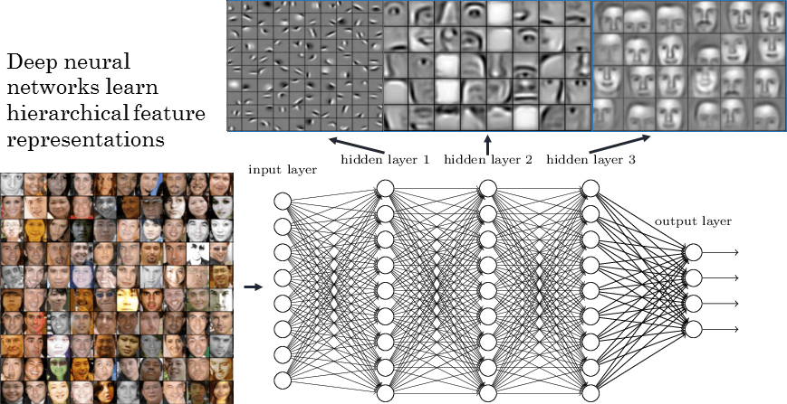 Deep Neural Networks Learn Facial Features