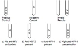 HIV - 3 spots markers