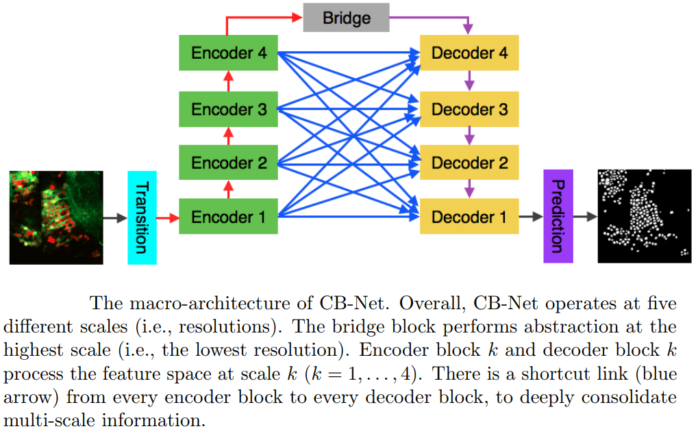 CB-Net2 - Bridge